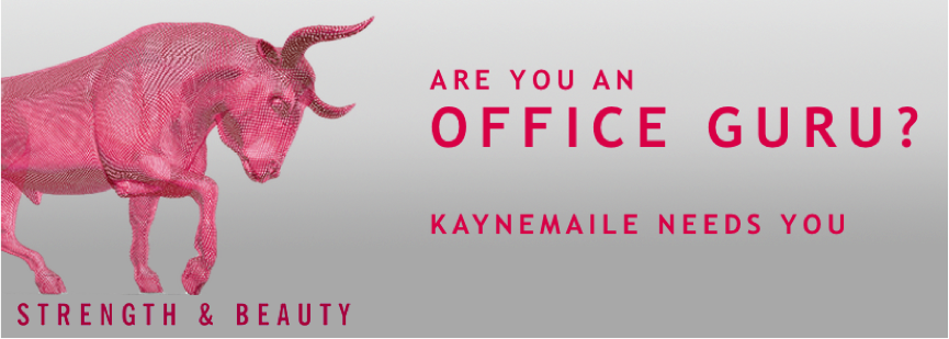 Kaynemaile Office Guru